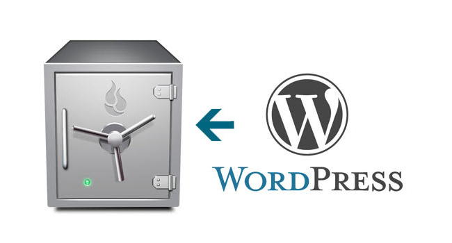 wordpress-error2