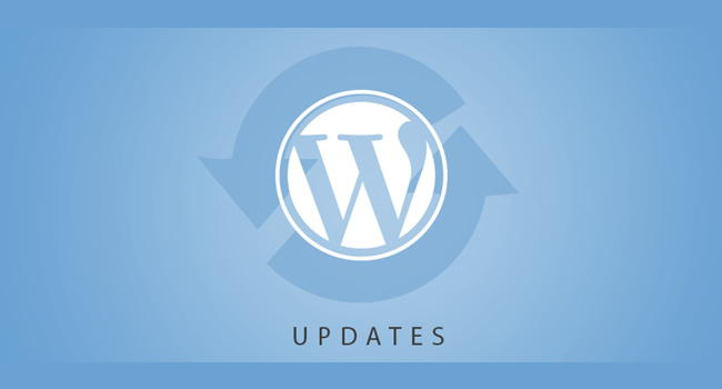wordpress-error3